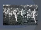 1940's Photographic Archive_7