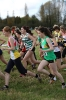 B'ham / Midland XC League - 10 November 2012_5