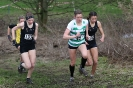 B'ham / Midland XC League - 12 January 2013_2