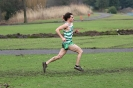 B'ham / Midland XC League - 12 January 2013_33