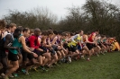 B'ham / Midland XC League - 12 January 2013_7