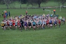 B'ham XC League - 9 February 2013 _1