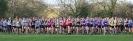 Midland Womens XC League - 12 November 2011_3