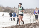 Midland XC Championships - 26 January 2013 _30