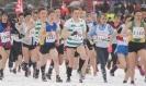 Midland XC Championships - 26 January 2013 _2