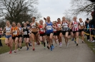 National 12/6 Stage Road Relays - 13 April 2013_2