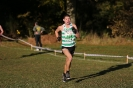 National XC Relays - 3 November 2012