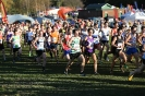 National XC Relays - 3 November 2012_2